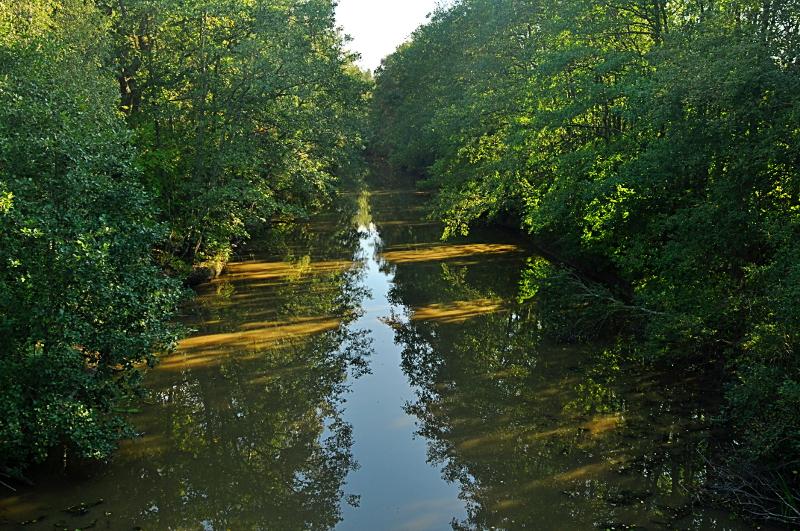 Lounais-Suomen kirkkaat vedet